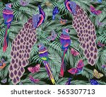 abstract colorful exotic birds  ... | Shutterstock .eps vector #565307713
