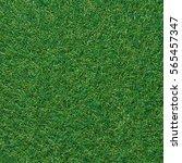 green grass background texture. ... | Shutterstock . vector #565457347