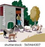 shepherd holding a bucket of... | Shutterstock .eps vector #565464307