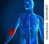 3d render of a medical image... | Shutterstock . vector #565491847