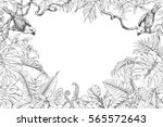 hand drawn branches and leaves... | Shutterstock .eps vector #565572643