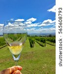 wine tasting with the view to... | Shutterstock . vector #565608793