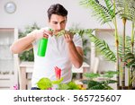 man taking care of plants at... | Shutterstock . vector #565725607