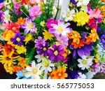flowers | Shutterstock . vector #565775053