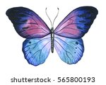 Butterfly Hand Painted...