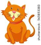 little cat with orange fur... | Shutterstock .eps vector #565853383