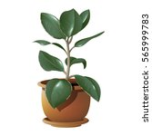 vector photorealistic plant... | Shutterstock .eps vector #565999783