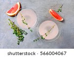 grapefruit and thyme gin... | Shutterstock . vector #566004067