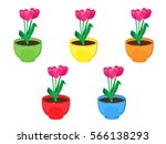 Flowers In Pots. Tulips. Vecto...