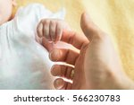 close up of a new born baby... | Shutterstock . vector #566230783