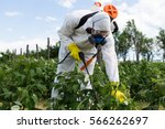agriculture worker   young... | Shutterstock . vector #566262697