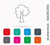 maple tree icon. forest wood... | Shutterstock . vector #566381503