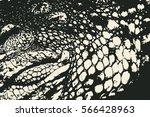 crocodile skin texture.... | Shutterstock .eps vector #566428963