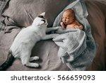 newborn baby boy sleeping with... | Shutterstock . vector #566659093