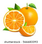 orange whole and slices of... | Shutterstock .eps vector #566683393