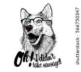 dog glasses illustration... | Shutterstock .eps vector #566750347