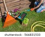 woman wearing gardening gloves... | Shutterstock . vector #566831533