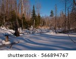 A Tree Lined Frozen Pond In...