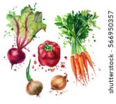 vegetable mix with splashes of... | Shutterstock . vector #566950357