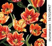 Wildflower Tulip Flower Patter...