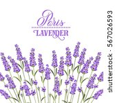 Wreath Of Lavender Flowers In...