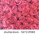 Stock photo rose background in vintage color theme for valentine day 567119083