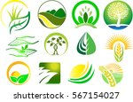 agriculture logos | Shutterstock .eps vector #567154027