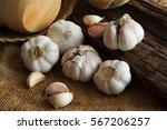 garlic bulb and garlic clove on ... | Shutterstock . vector #567206257