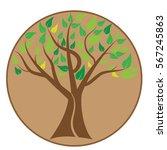 tree vector. for tree logo... | Shutterstock .eps vector #567245863