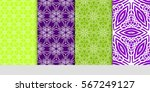 set of geometric floral... | Shutterstock .eps vector #567249127