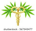 medical marijuana cannabis... | Shutterstock . vector #567343477