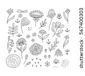 hand drawn floral elements set. ... | Shutterstock .eps vector #567400303