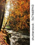 Stock photo autumn colored trees leaves rocks around the beautiful river 567468943