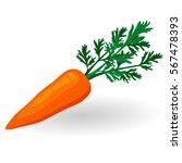 carrot with top vector... | Shutterstock .eps vector #567478393