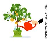 money tree care vector isolated ... | Shutterstock .eps vector #567513703