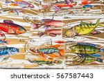 stamp collecting. philatelic.... | Shutterstock . vector #567587443