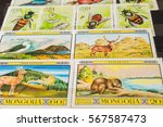 stamp collecting. philatelic.... | Shutterstock . vector #567587473