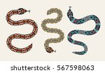 set of snakes with a decorative ... | Shutterstock .eps vector #567598063