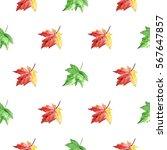 hand drawn watercolor autumn...   Shutterstock . vector #567647857
