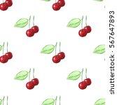 hand drawn watercolor cherry...   Shutterstock . vector #567647893