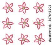 hand drawn watercolor flower...   Shutterstock . vector #567648103