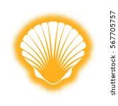 vector scallop seashell... | Shutterstock .eps vector #567705757