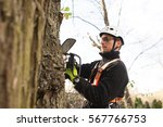 Lumberjack With Chainsaw And...