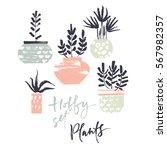 hobby set. plants in pots. dry... | Shutterstock .eps vector #567982357