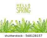 spring background with green... | Shutterstock .eps vector #568128157