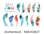hand drawn watercolor paintings ... | Shutterstock . vector #568142827