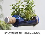 an image of a recycled bottle... | Shutterstock . vector #568223203