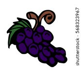 grape on a white background... | Shutterstock . vector #568323967