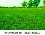 golf lawn sport | Shutterstock . vector #568450033