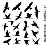 birds in flight set silhouettes | Shutterstock .eps vector #568582417